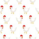 White hen rural seamless vector pattern. Stock Image