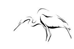 White bird ink sketch Royalty Free Stock Photos