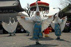 White heron dance Stock Image