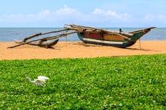 White heron seeking food on the beach Stock Images