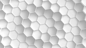 White hexagon background stock images