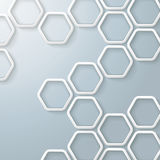 White Hexagons Honeycomb Infographic vector illustration