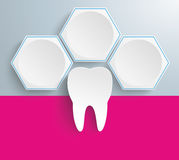 3 White Hexagons Tooth. Infographic with honeycomb structure and tooth on the gray background Stock Photo