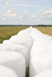 White hey bales packed Royalty Free Stock Photo
