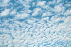 White high heaped clouds background. White high heaped clouds over blue sky - background Stock Photo