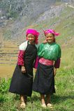 White Hmong Girls. Two girls in las mountains to gather herbs. From their earliest years children wielding a sickle and participate in farm work for the family Royalty Free Stock Image