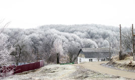 White hoarfrost on trees in the countryside Stock Image