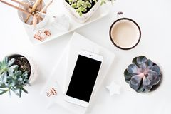 office desk flat lay with coffe, smartphone and succulents, clea royalty free stock photos