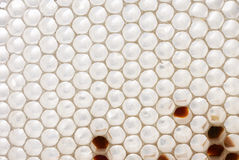 White honeycomb Royalty Free Stock Images