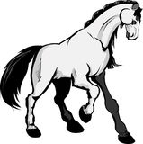 White horse. Vector illustration. black and white Royalty Free Stock Photography