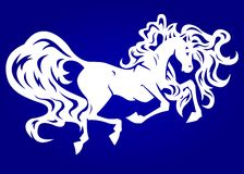 White horse on blue Royalty Free Stock Photo