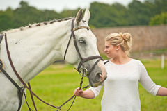 White horse at Burgie 2014 Stock Images