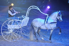 White Horse Carriage Royalty Free Stock Photography