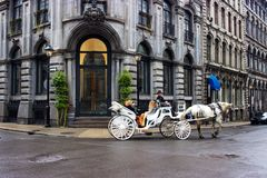 White horse and carriage, historic buildings, Old Montreal, Quebec, Canada Royalty Free Stock Images