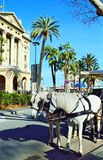 White horse carriage at La Rambla street Barcelona Stock Image