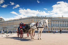 White horse with carriage on Palace square in Saint Petersburg Royalty Free Stock Photos