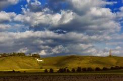 White Horse. The white horse and Cherhill monument Stock Image