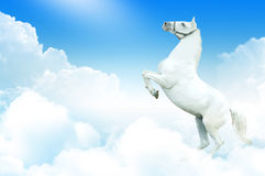 White horse in the clouds stock photo