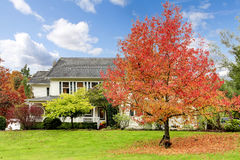 White horse farm American house during fall with green grass. Stock Photos