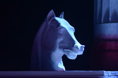 White horse head made of papier mache. On a dark background Royalty Free Stock Images