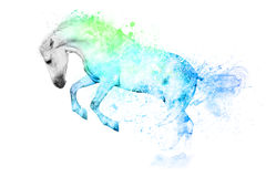White horse isolated. White horse in blue and green paint stains Stock Images