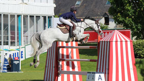 White horse Jumping at the Baule city ,  CSIO 2017 Stock Photography