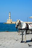 White horse and lighthouse, Chania. Royalty Free Stock Photography