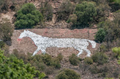 White Horse on Naval Hill in Bloemfontein Stock Photos