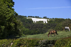 The White Horse near Kilburn - Yorkshire - England Stock Images