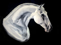 White horse portrait painting Royalty Free Stock Photos