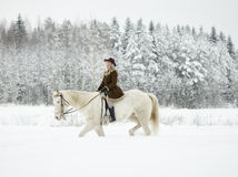 White horse and riding woman Stock Photo