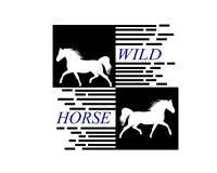 White horse runs gallop sketch royalty free illustration