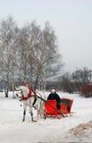 White horse runs on snow ground. Stock Image