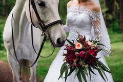 White Horse Sniffs Bridal Bouquet In Bride`s Hands Royalty Free Stock Photo
