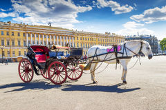 White horse with vintage carriage on Palace square in St Petersb Stock Images