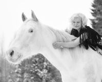 White horse and woman Stock Photography