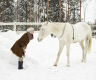 White horse and woman Royalty Free Stock Photography