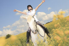 White horse on yellow flower. A white horse on yellow flower field with a rider Stock Photography