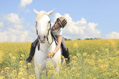 White horse on yellow flower. A white horse on yellow flower field with a rider Royalty Free Stock Image