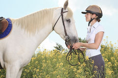 White horse on yellow flower. A white horse on yellow flower field with a rider Royalty Free Stock Photo