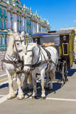 White horses and royal carriage Stock Photo