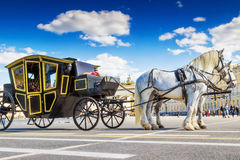 White horses with traditional old  carriage Royalty Free Stock Images