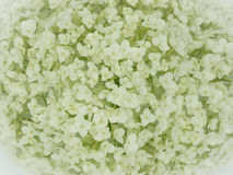 White hortensia closeup Royalty Free Stock Photography