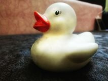 White Hot Safety Bath Ducky. stock image