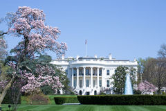 The White House. Home of the President of the United States of America Royalty Free Stock Photo