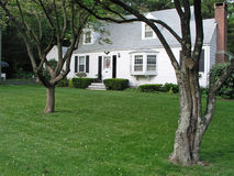 White House. White Colonial House with trees in the front yard Stock Photo
