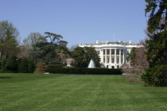 White house. The white house Royalty Free Stock Photo