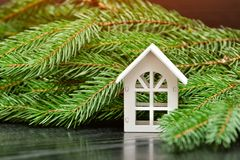 White house on a background of a green fir branch Royalty Free Stock Photography