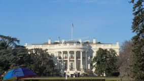 White house. This is a beautiful picture of the white house taken by the national tree in Washington D.C royalty free stock photos
