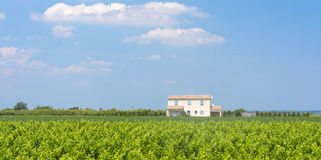 White house in Camargue (Provence) Royalty Free Stock Image